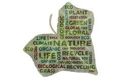 Fotografia tworząca etykietki chmura z słowami kluczowymi od pola podkreślającego na zielonym bluszcza liściu natura ilustracja wektor