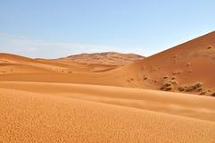Sahara Zdjęcia Royalty Free