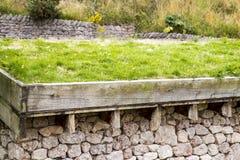 Fotografia Zielony dach Zdjęcia Royalty Free