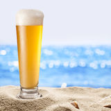 Fotografia zimnego piwa botle w piasku Zdjęcia Stock