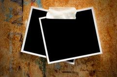 Fotografias em branco Imagem de Stock
