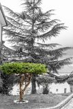 Fotograficzna dokumentacja między ulicami Castel Di Sangro Fotograficzna dokumentacja między ulicami Castel Di San obraz royalty free