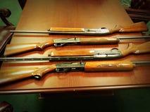 Fotografie della pistola Immagine Stock