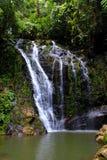 Fotografie der wild lebenden Tiere: ein Wasserfall mitten in dem grünen Dschungel Lizenzfreie Stockbilder