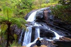 Fotografie der wild lebenden Tiere: ein Wasserfall mitten in dem grünen Dschungel Stockbild