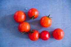 Fotografie des biologischen Lebensmittels - Tomaten, Minze und rote rote Rübe Lizenzfreies Stockbild