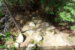 Fotografie des ruhigen Platzes im Wald mit Steinen Lizenzfreie Stockbilder