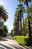 Fotografie die in mediterraan eiland Corsica wordt genomen Royalty-vrije Stock Afbeeldingen