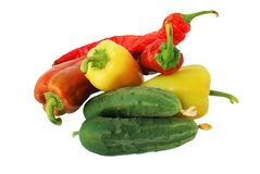 Fotografie-Stillleben mit Gemüse auf einem weißen Hintergrund Illustration für gesign Lizenzfreie Stockfotos