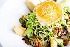 Ziegenkäse-Salat Lizenzfreies Stockbild