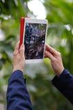 Fotografieren auf einer Tablette Stockfoto