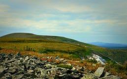 Fotografii Alps łąki mimo to Zdjęcia Royalty Free