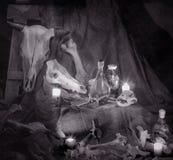 Fotografii kości i czaszki zwierzęta blaskiem świecy obrazy royalty free