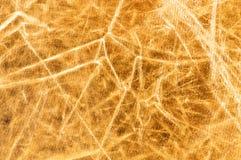 fotografii odbłyśnika błyszcząca powierzchnia Obraz Stock