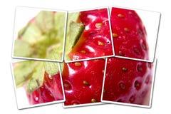 fotografii odosobniona truskawka obrazy stock