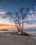 Fotografii panoramy zmierzch cudowny Batam bintan Indonezja obrazy stock
