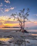 Fotografii panoramy zmierzch cudowny Batam bintan Indonezja zdjęcia stock