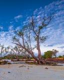 Fotografii panoramy zmierzch cudowny Batam bintan Indonezja obraz royalty free