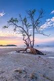 Fotografii panoramy zmierzch cudowny Batam bintan Indonezja zdjęcie royalty free