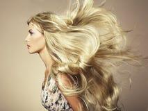 fotografii piękna włosiana wspaniała kobieta Zdjęcia Stock