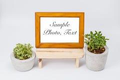 Fotografii rośliny w kwiatów garnkach i rama Obrazy Royalty Free