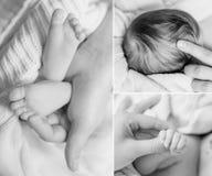 Fotografisk collage av nyfött behandla som ett barn kroppsdelen royaltyfri bild