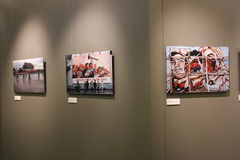 Fotografisk utställning för BRUNO BARBEY 'S Royaltyfria Foton