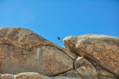 Fotografkerl, der über Felsen springt stockbilder