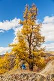 Fotografo che prende immagine in montagne Fotografia Stock