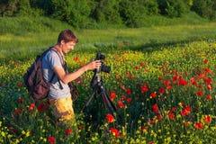 Fotografo che prende le immagini dei papaveri nel campo Immagini Stock Libere da Diritti