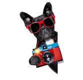 Fotografo del cane Immagine Stock
