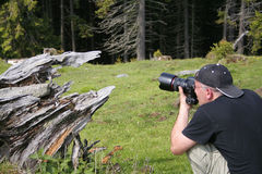 Fotografo nell'azione Immagini Stock