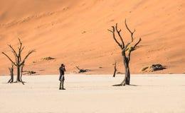 Fotografo solo di viaggio di avventura al cratere di Deadvlei in Sossusvlei Fotografie Stock