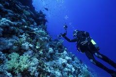 Fotografo subacqueo con una tartaruga Immagine Stock