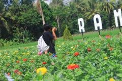 Fotografy стоковые изображения rf