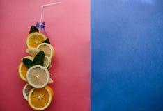 Fotographia concettuale Una bottiglia dell'agrume fresco significa il succo fresco di frutta o della limonata in pieno delle vita Fotografia Stock