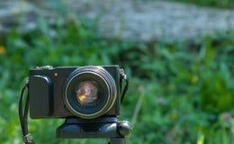 Fotokamera som monteras på tripoden Royaltyfri Fotografi