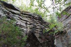 Fotolandskap av skogen och stenar på berget arkivfoto