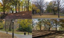 Fotomosaik mit Szenen vom Central Park, New York Lizenzfreie Stockbilder