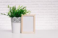 Fotorahmen und -Zimmerpflanze Lizenzfreie Stockbilder