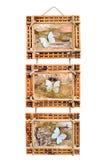 Fotoram för tre bambu som isoleras på white Royaltyfria Bilder
