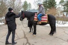 Fotos auf einem Pferd Stockfoto
