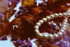 Fotos de los pétalos de la flor, gotas, joyería, pulsera, Foto de archivo libre de regalías