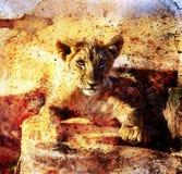 Fotos del cachorro de león y collage abstracto de pintura Ojo Foto de archivo libre de regalías