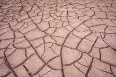 Fotos del primer del suelo seco fotos de archivo