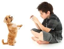 Fotos del Shooting del muchacho de su perro con las cámaras digitales imágenes de archivo libres de regalías
