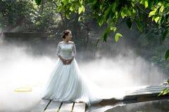 Fotos do casamento da noiva bonita Imagem de Stock