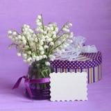 Fotos do estoque da mola do cartão do narciso do dia de mães Imagens de Stock Royalty Free