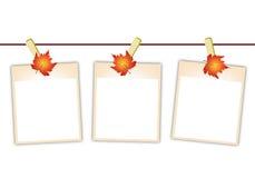 Fotos en blanco con las hojas de arce que cuelgan en Clothesl Imagen de archivo libre de regalías