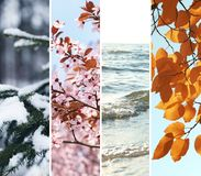 Fotos hermosas de la naturaleza imagen de archivo libre de regalías